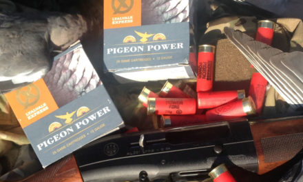 Review : Pigeon Power Cartridges from Lyalvale Express