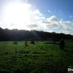 ShootClay visits… Bardney Clays