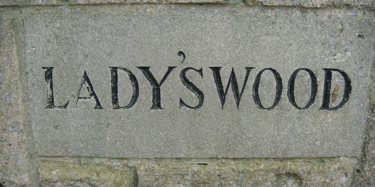 ShootClay visits… Ladys Wood Shooting School